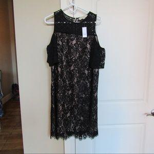 SOLD NWT Loft Cold Shoulder Dress